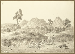 View on the road from Chhatna to Gaurandi (Bihar); hills in the distance, elephant and pack-bullocks in foreground. 3 February 1823